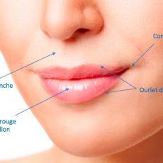 Traiter les plis d'amertume par le lipofilling du visage